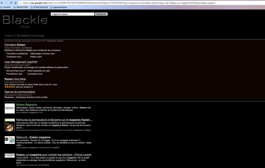 En s'affichant sur fond noir, le moteur de recherche Blackle consomme moins d'énergie que sur fond blanc.