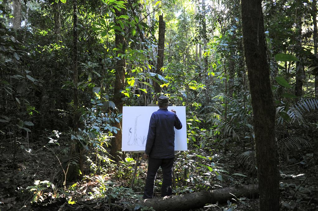 La forêt est essentielle
