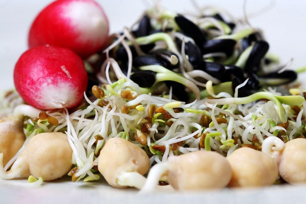 Les graines germées, un atout santé