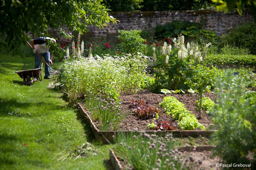 Le bio est il moins productif kaizen for Bio jardin didenheim