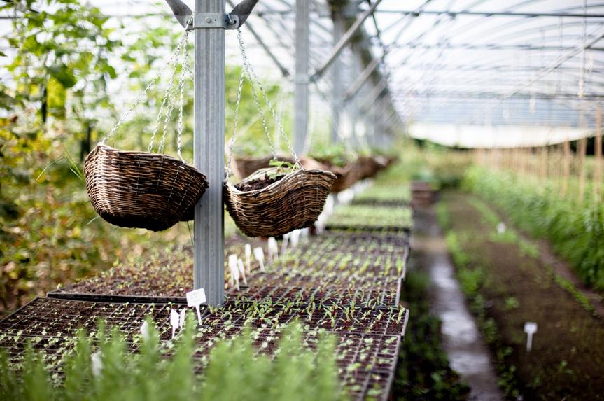 Très Les miracles de la permaculture - Kaizen AK34