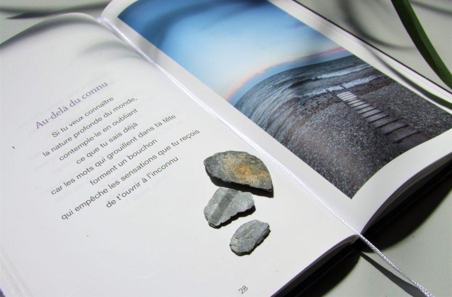 Indi Blue est la seule maison d'édition de France à travailler sur le papier de pierre.